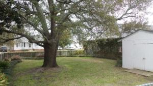 1503 Arendell St. Yard resized