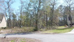 Ardan Oaks Lot resized